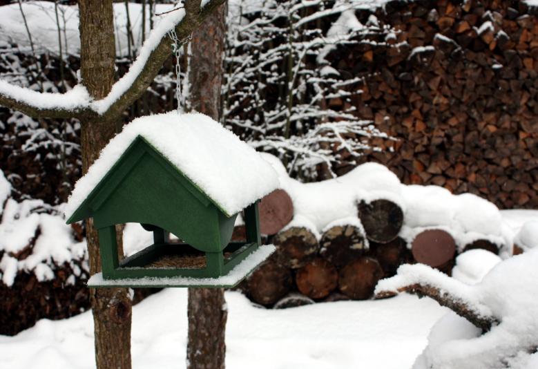 tree_birds